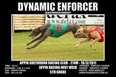 Appin_190311_Race10_Dynamic_Enforcer