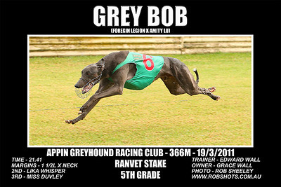 Appin_190311_Race08_Grey_Bob