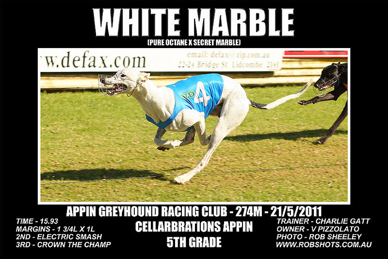 Appin_210511_Race02_White_Marble