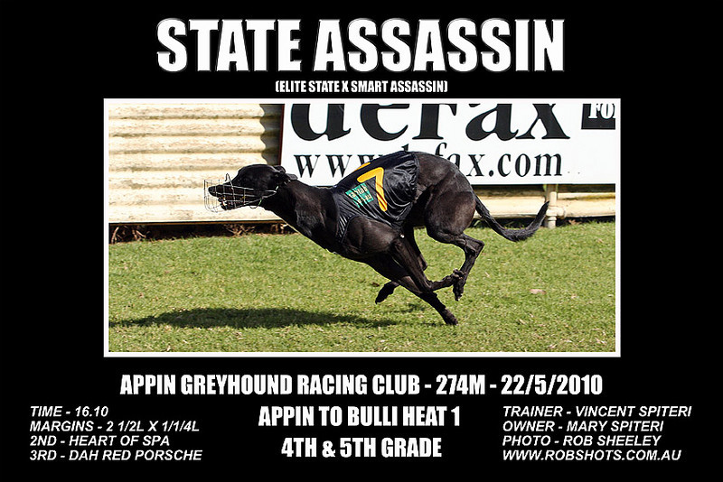 Appin_220510_Race01_State_Assassin