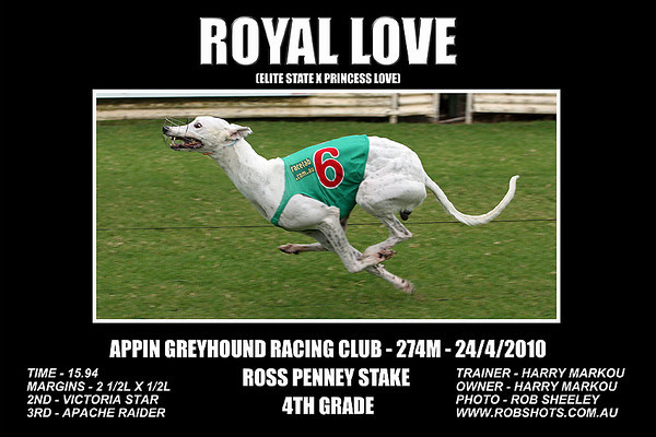 Appin_240410_Race_08_Royal_Love