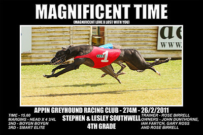 Appin_260211_Race10_Magnificent_Time