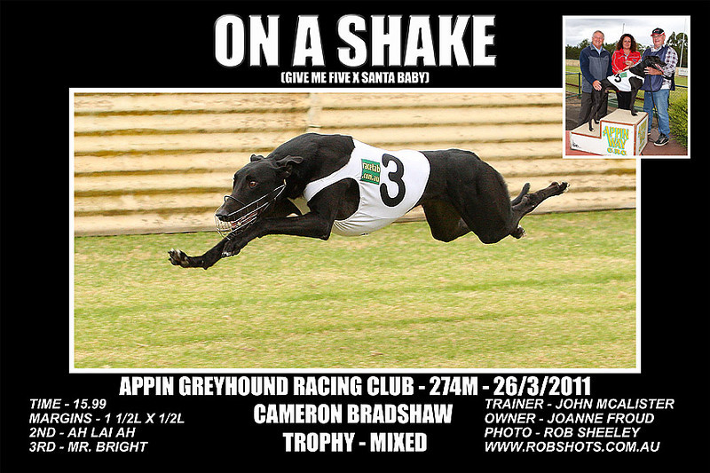 Appin_260311_Race08_On_A_Shake