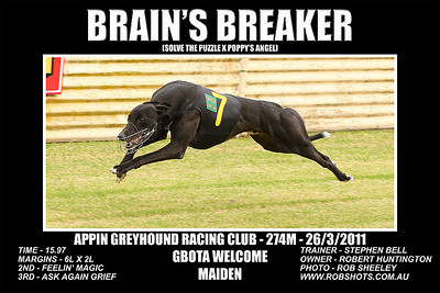Appin Greyhounds - 26th March 2011