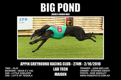 Appin_021010_Appin_Race07_Bigpond