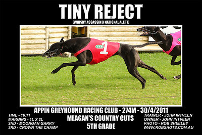 Appin_300411_Race05_Tiny_Reject