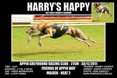 Appin_300411_Race03_Harrys_Happy