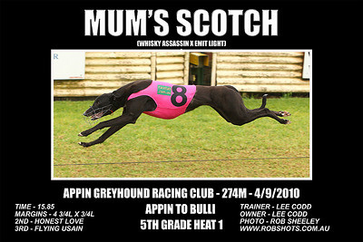 Appin Greyhounds - 4th September 2010