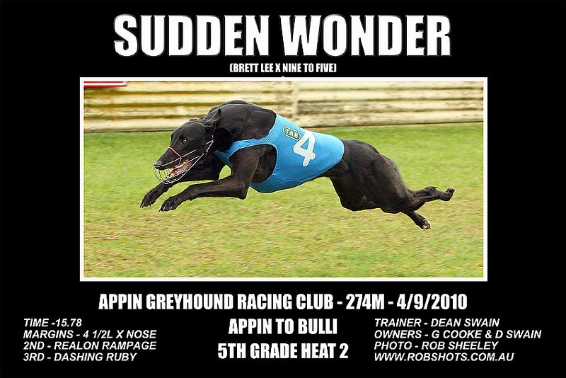 Appin_040910_Race05_Sudden_Wonder