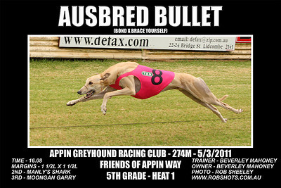 Appin_050311_Race07_Ausbred_Bullet