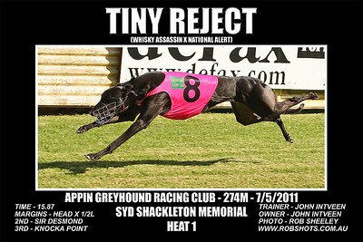 Appin Greyhounds - 7th May 2011