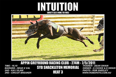 Appin_070511_Race07_Intuition