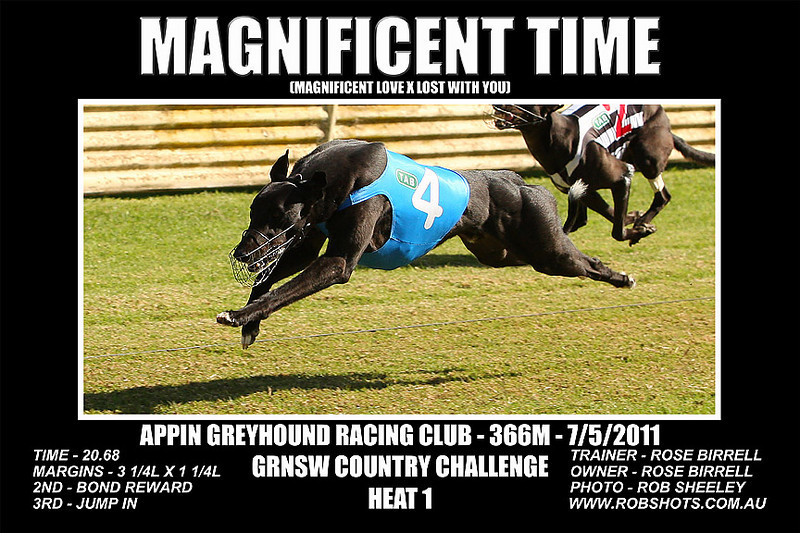 Appin_070511_Race03_Magnificent_Time