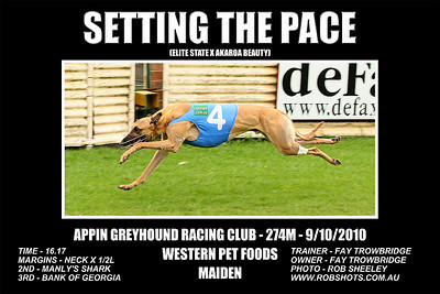 Appin Greyhounds - 9th October 2010