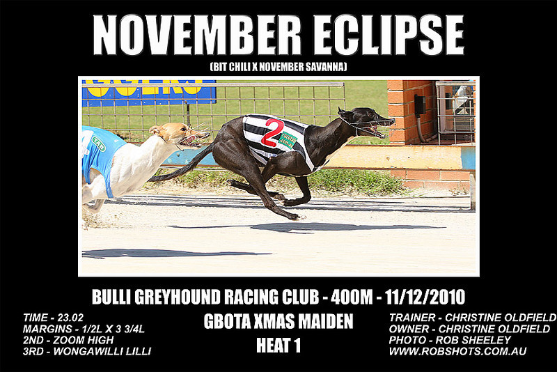 Bulli_111210_Race07_November_Eclipse