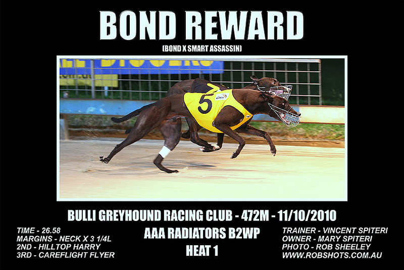 Bulli_111010_Race03_Bond_Reward