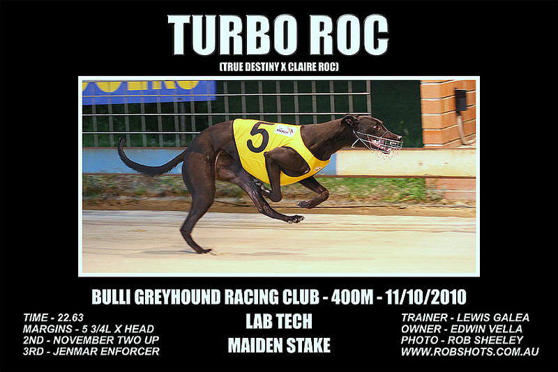 Bulli_111010_Race01_Turbo_Roc