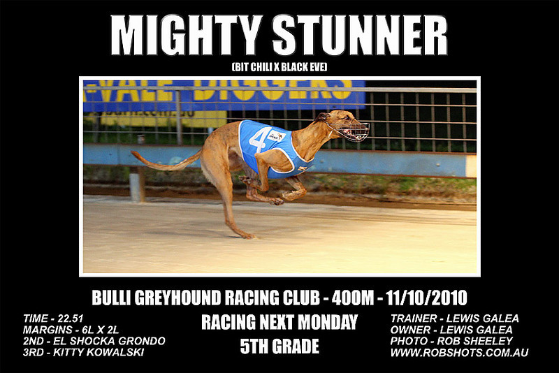 Bulli_111010_Race10_Mighty_Stunner