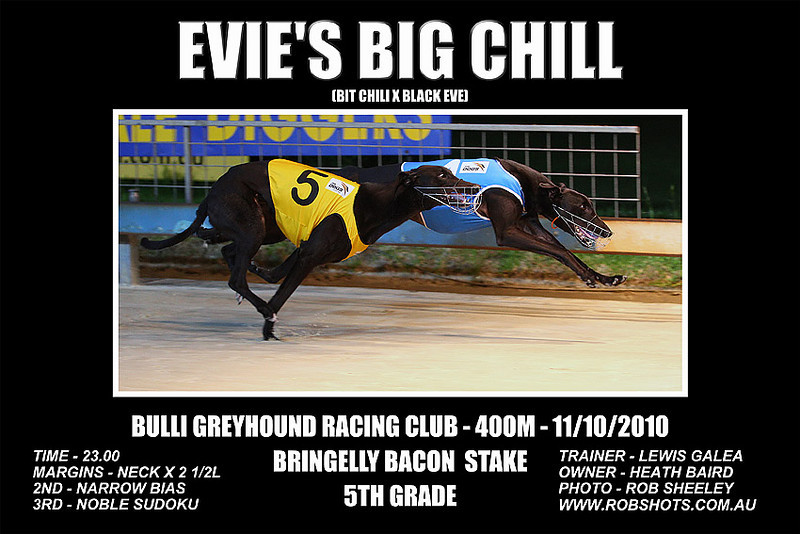 Bulli_111010_Race09_Evie's_Big_Chill
