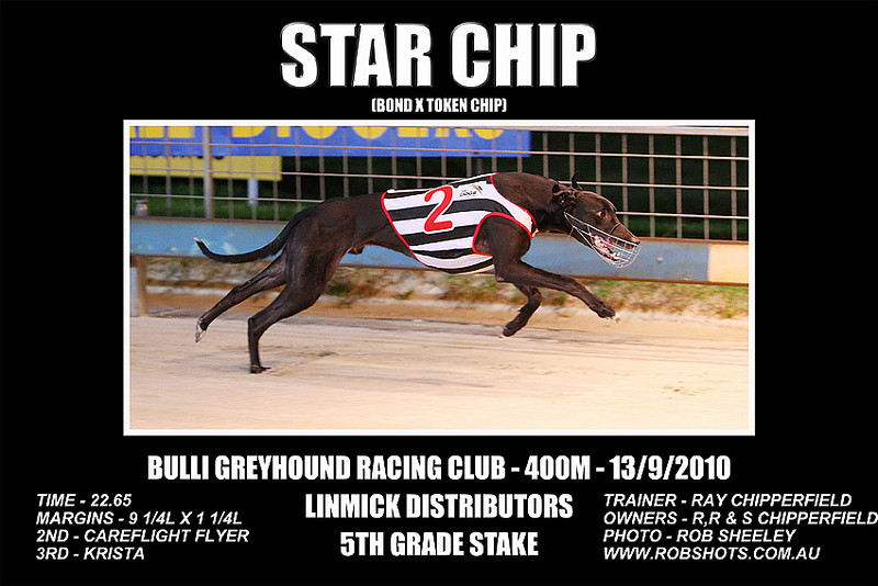 Bulli_130910_Race09_Star_Chip