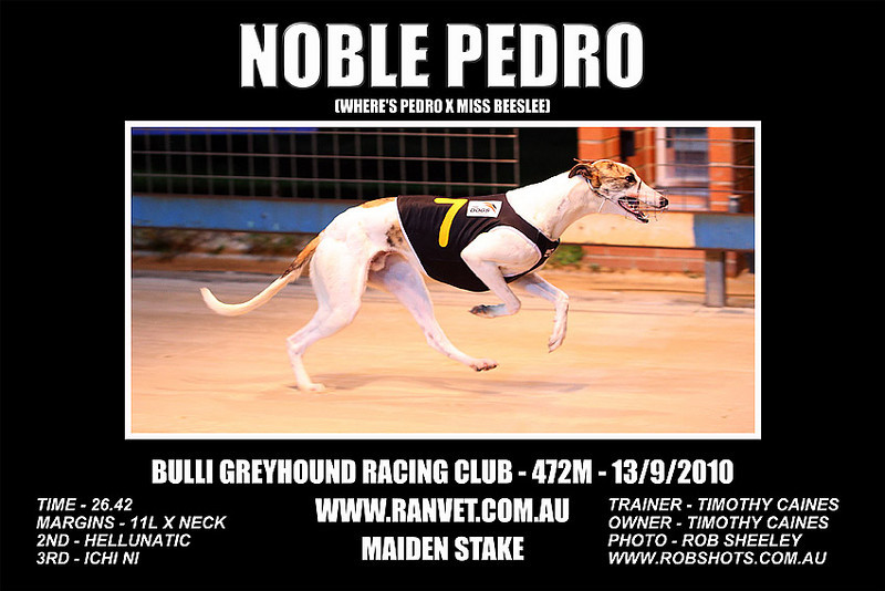 Bulli_130910_Race02_Noble_Pedro