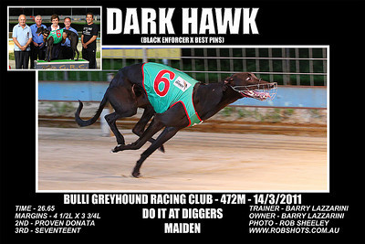 Bulli_140311_Race04_Dark_Hawk