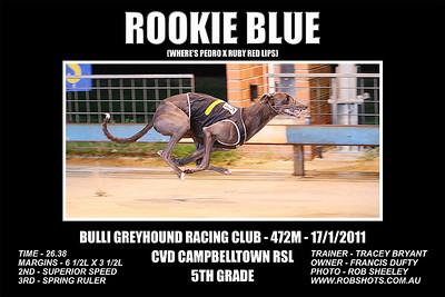 Bulli_170111_Race06_Rookie_Blue