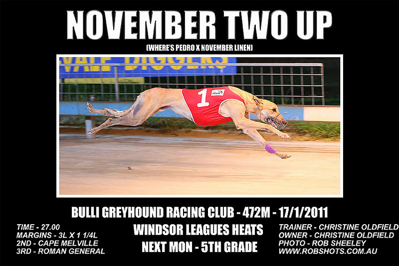 Bulli_170111_Race09_November_Two_Up