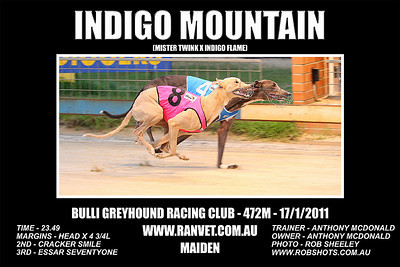 Bulli_170111_Race02_Indigo_Mountain