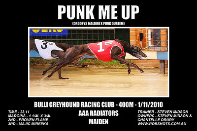 Bulli_011110_Race03_Punk_Me_Up