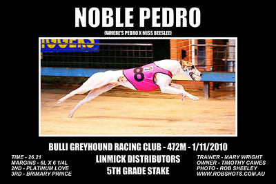 Bulli_011110_Race09_Noble_Pedro