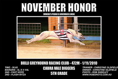 Bulli_011110_Race08_November_Honor