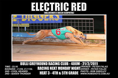 Bulli_210211_Race10_Electric_Red