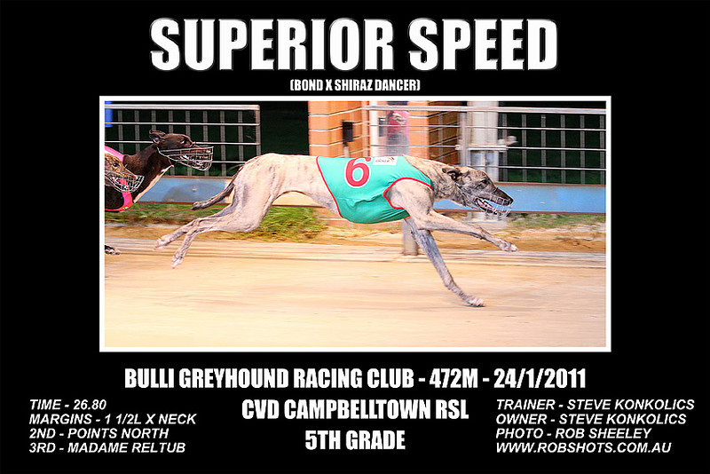Bulli_240111_Race06_Superior_Speed