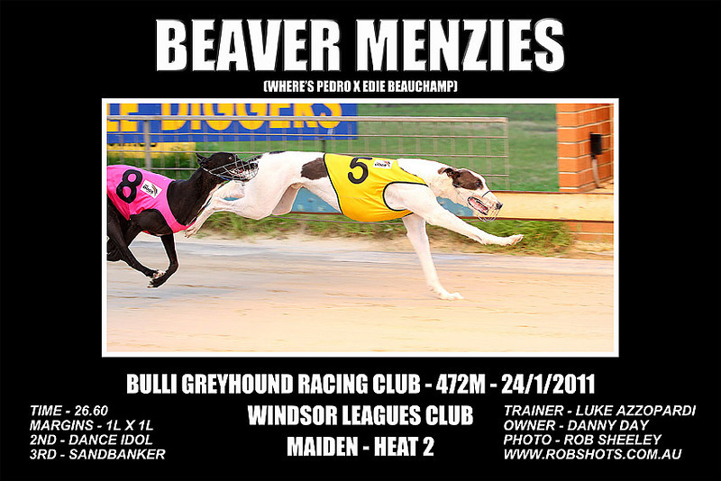 Bulli_240111_Race02_Beaver_Menzies