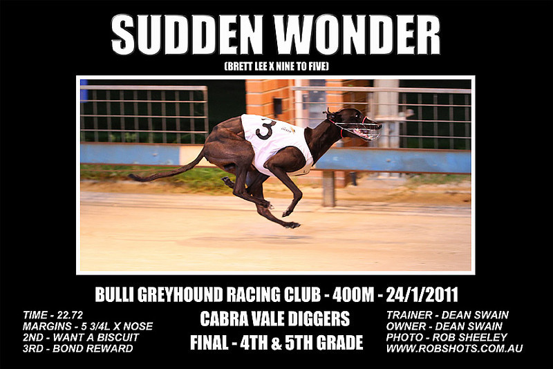 Bulli_240111_Race08_Sudden_Wonder