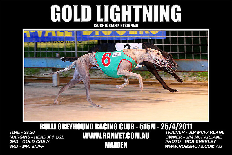 Bulli_250411_Race02_Gold_Lightning