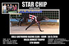 Bulli_300510_Race03_Star_Chip_presentation