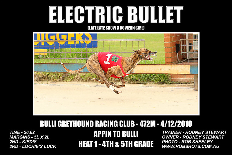 Bulli_041210_Race02_Electric_Bullet