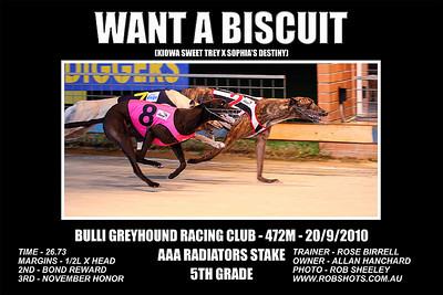 Bulli_041010_Race03_Want_A_Biscuit