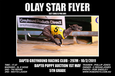 Dapto_100111_Race10_Olay_Star_Flyer