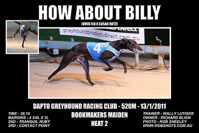 Dapto_130111_Race04_How_About_Billy_02