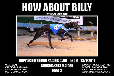 Dapto_130111_Race04_How_About_Billy