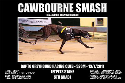 Dapto_130111_Race08_Cawbourne_Smash