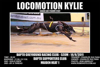 Dapto_140311_Race01_Locomotion_Kylie