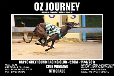 Dapto_140311_Race10_Oz_Journey