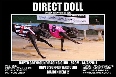 Dapto_140311_Race04_Direct_Doll