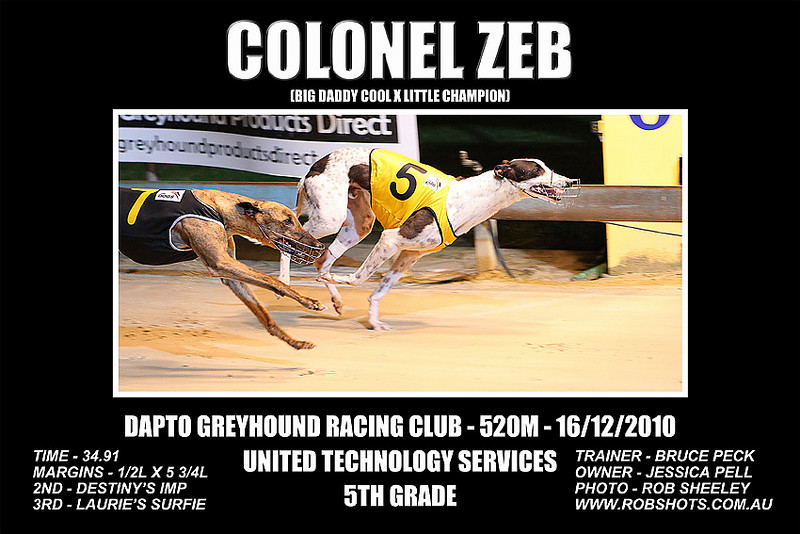Dapto_161210_Race08_Colonel_Zeb