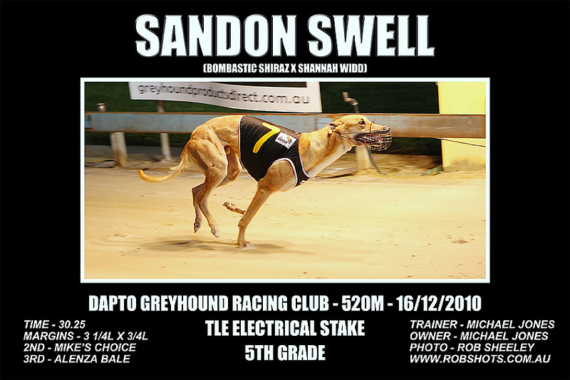 Dapto_161210_Race05_Sandon_Swell_02