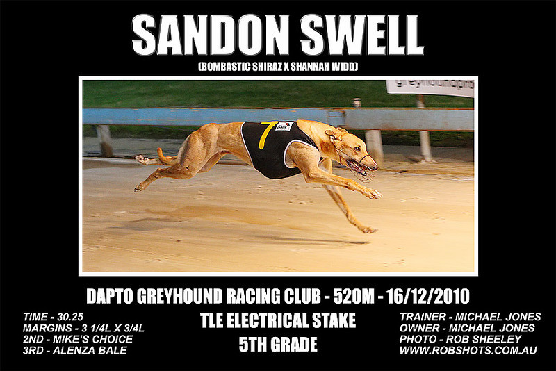 Dapto_161210_Race05_Sandon_Swell_01